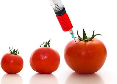 Simple ways to avoid GMO foods