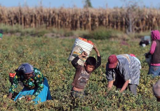 2 million  Mexicans in precarious jobs, according to expert