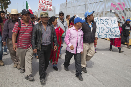 The Pacific Coast farmworker rebellion — FULL STORY in English version only