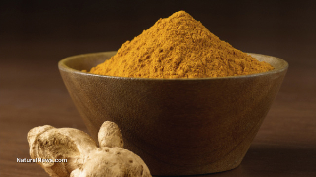 Turmeric-Root-Curcumin-Powder_health