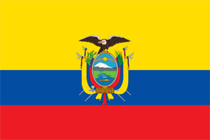 Ecuador:  National Morning  declared, death tall rises