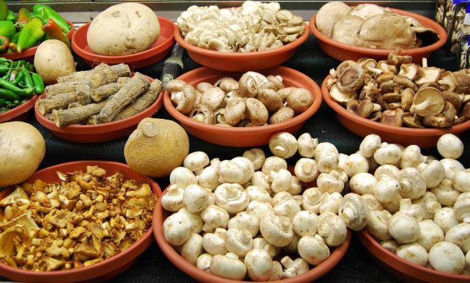 mushrooms_health2