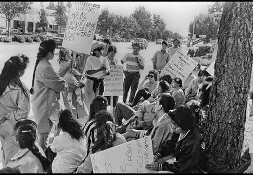 Roots of social justice  organizing in Silicon Valley
