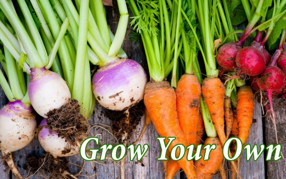 vegetables_grow_health