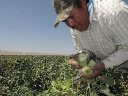 Legislation to expand farm worker overtime clears Senate