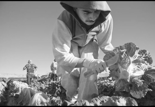 Farmworker overtime bill heads for another vote