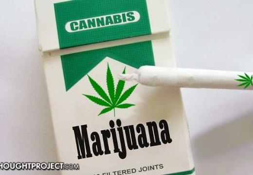 Un Estado propone ley para tratar la hierba cómo tabaco y borrar todos los récords criminales por marihuana