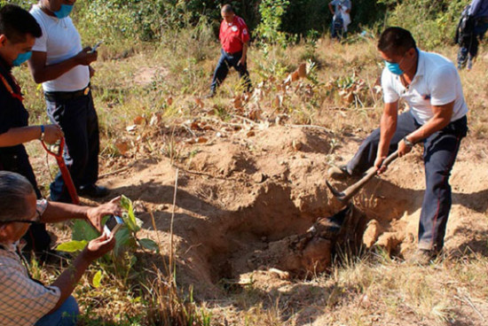Hidden graves in Mexico count: 1,143