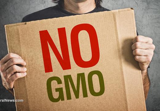 Non GMO vs. organic