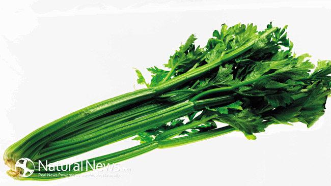 Celery_health