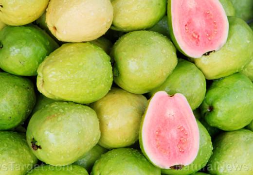 Beber ñame de raíz de frijol o jugo de guayaba puede mejorar la salud de su corazón