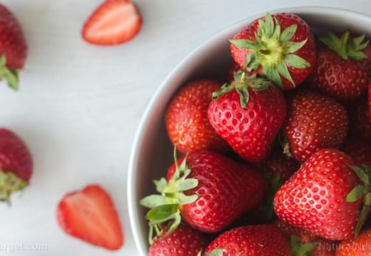 Se descubre que las fresas orgánicas ayudan a detener el crecimiento de células cancerosas