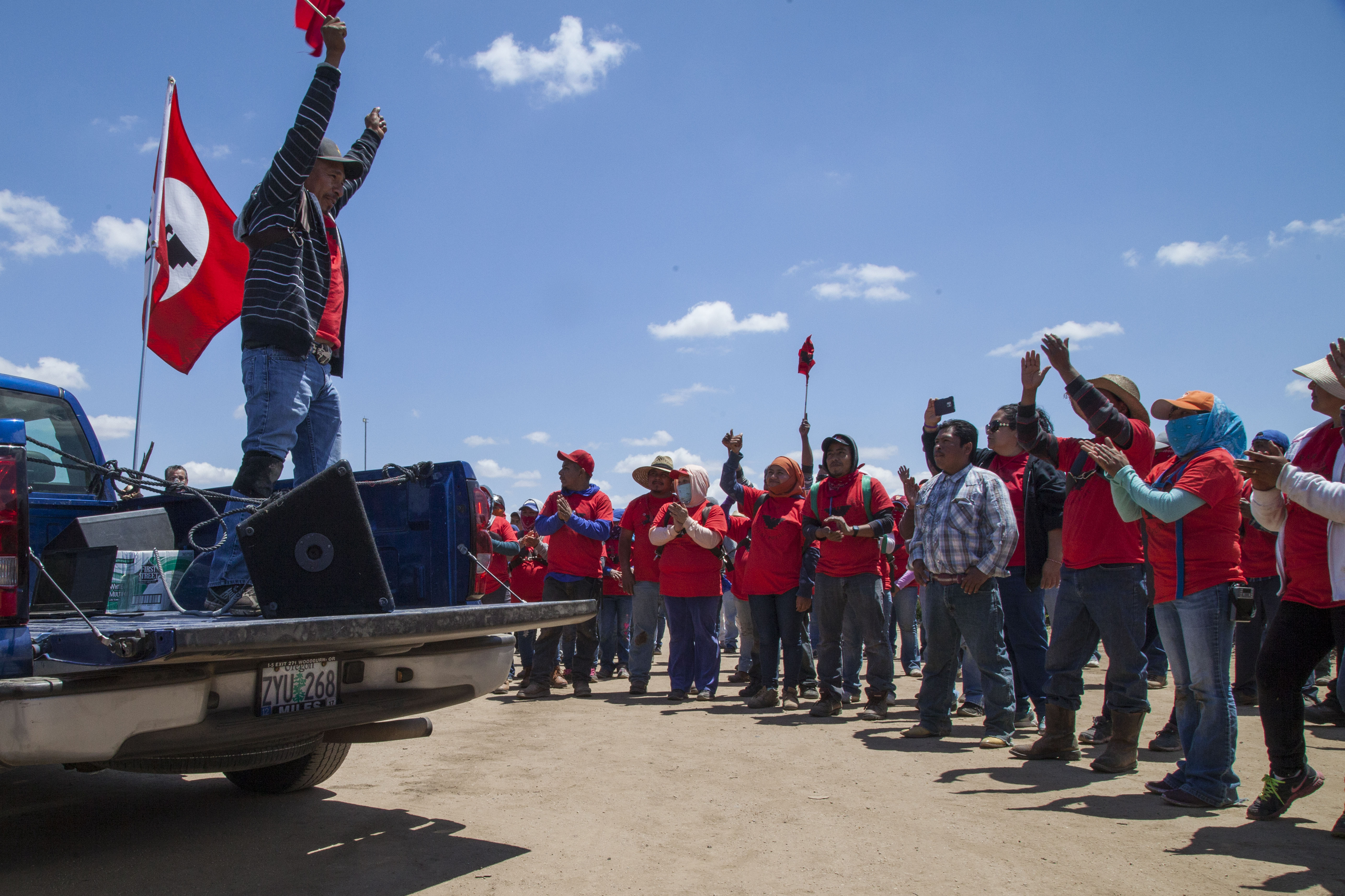 Farm Workers Celebrate After their Union Wins the Vote at Blueberry Farm