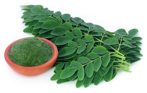 Add organic MORINGA leaf powder to your daily routine