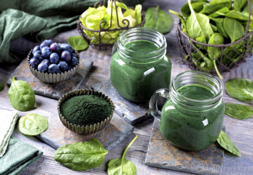 Superfood showdown: The health benefits of chlorella and spirulina