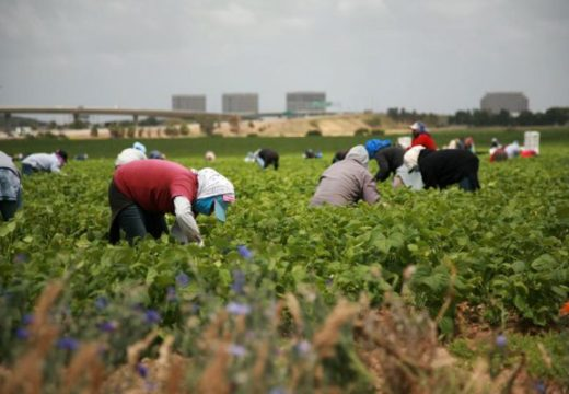 Mexico responds to GM union complaint by accusing US of violating migrants' rights