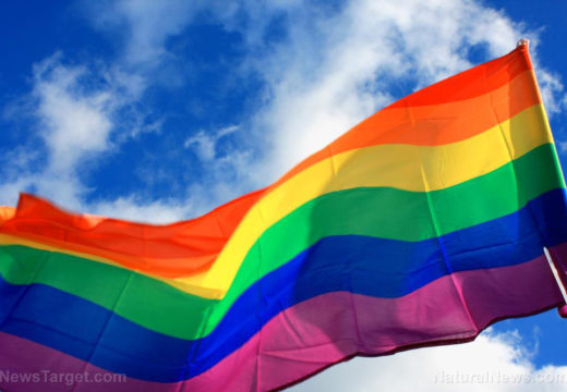 """PRONOUNS PUKED: California court strikes down law that punishes the """"misgendering"""" of LGBT"""